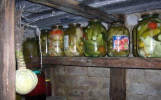Как утеплить овощную яму в гараже?