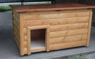 Как утеплить будку для собаки на зиму?