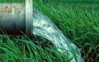 Как найти воду на участке под скважину?