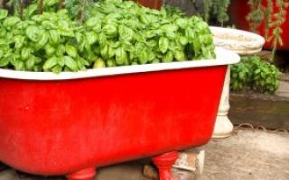 Как приспособить старую ванну на даче?