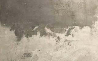 Сколько сохнет гипсовая штукатурка на стенах?